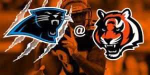 02- Panthers vs. Bengals
