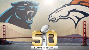 Super Bowl 50 -Panthers-Broncos-SB-Matchup